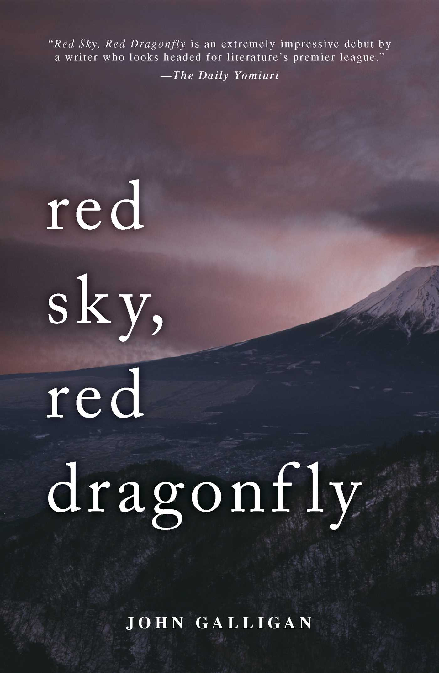 Red Ski, Red Dragonfly - book cover
