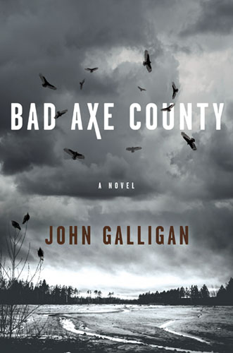 Bad Axe County - book cover